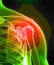 Vertebrea joint pain muscle pain fibromyalgia