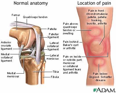 knee injury treatment options
