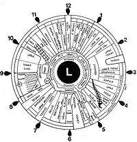 Soon you can buy you Iridology Eye Charts here!