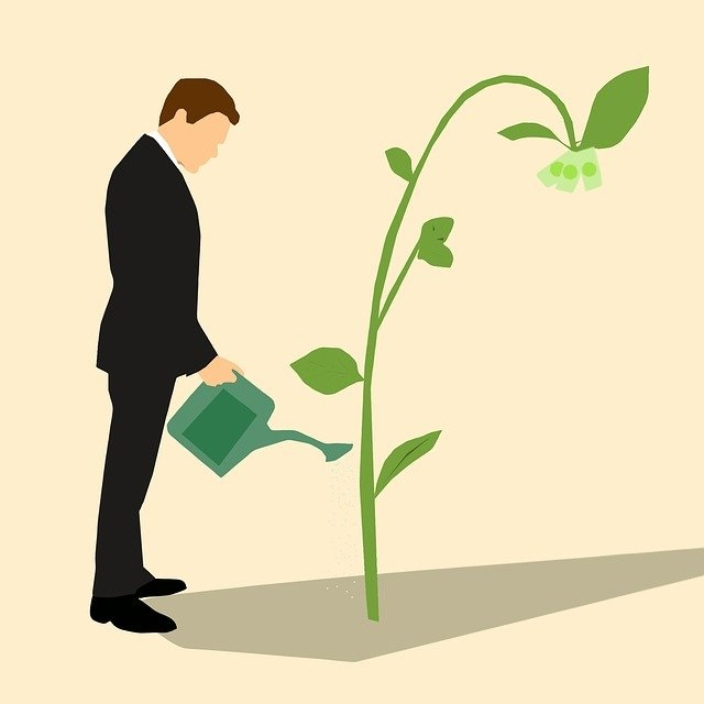 By working at Lennar Corporation you water and quickly grow a Money Tree for unprincipled Lennar Executive and corrupt insider traders