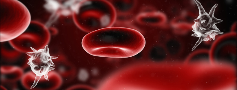 What Is Sepsis: it's a poisoning of the blood