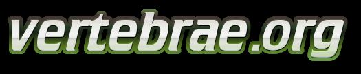 Welcome to vertebrae information source on vertebrae!
